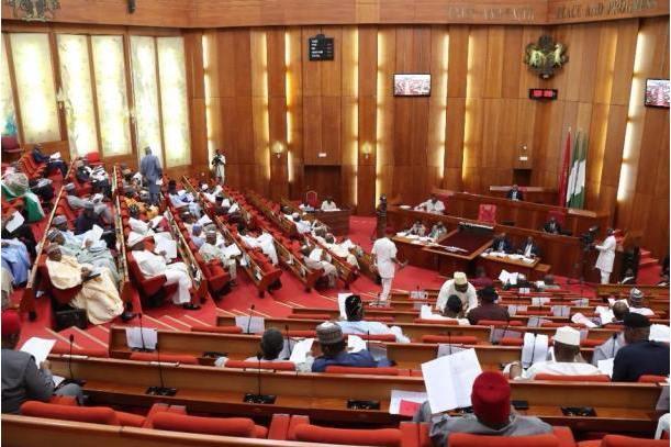 Nigeria's Senate passes N10.59 trillion budget for 2020